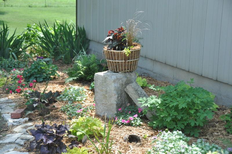 061418 In The Garden Wise