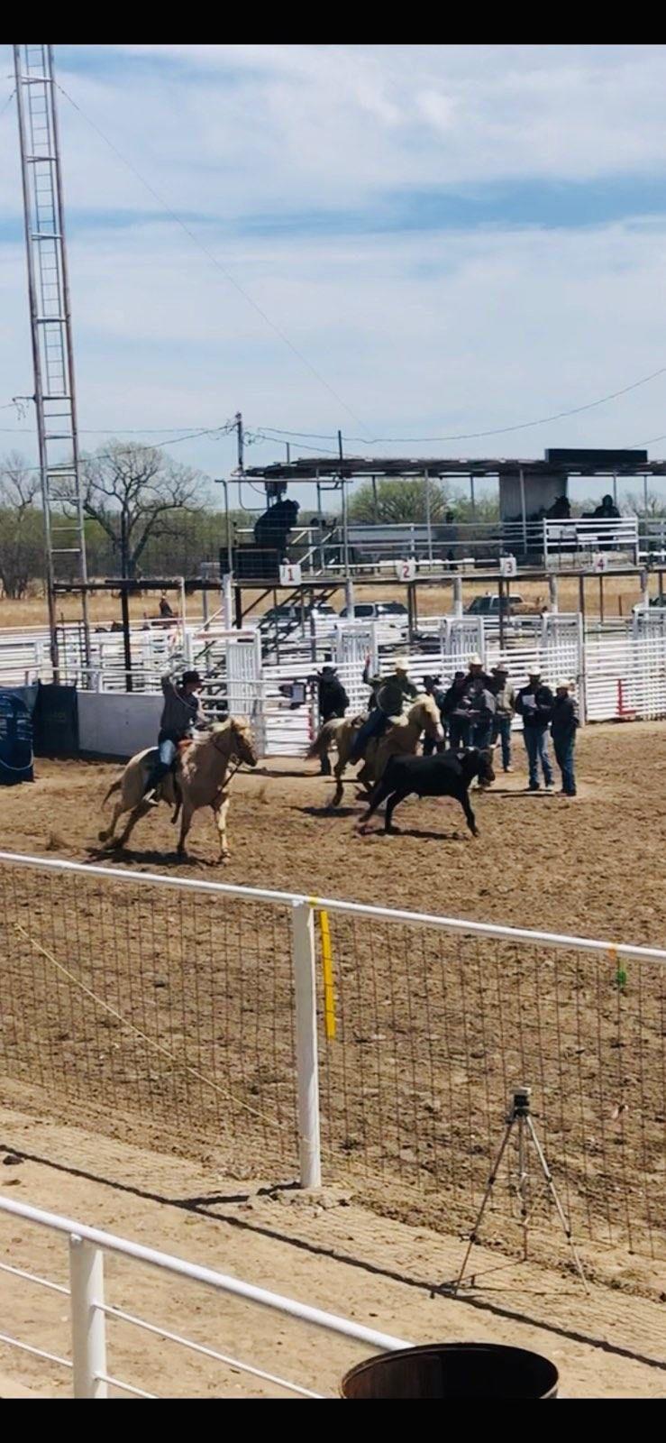 060819-gaz-rodeo2