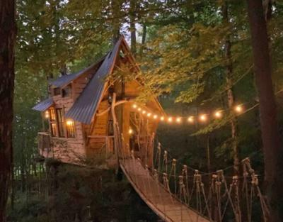 Bliss Ridge Treehouse.JPG
