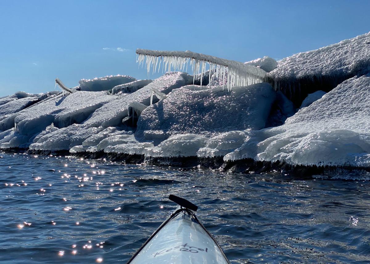 icy driftwood.JPEG