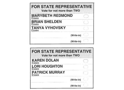 2020 essex sample primary ballot