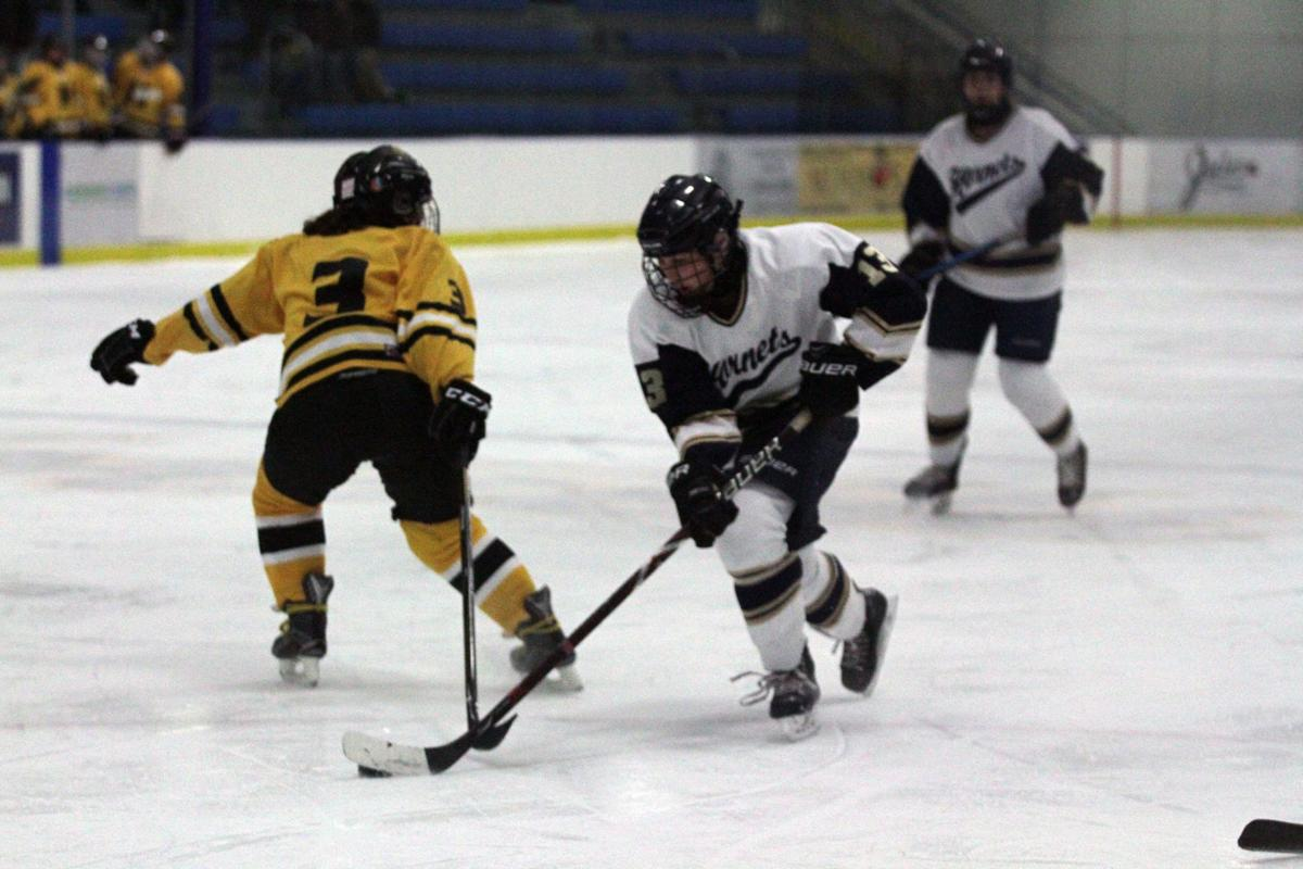 EHS girls' ice hockey working toward another title