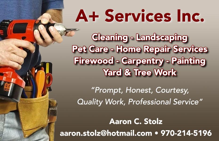 A+ Services Inc