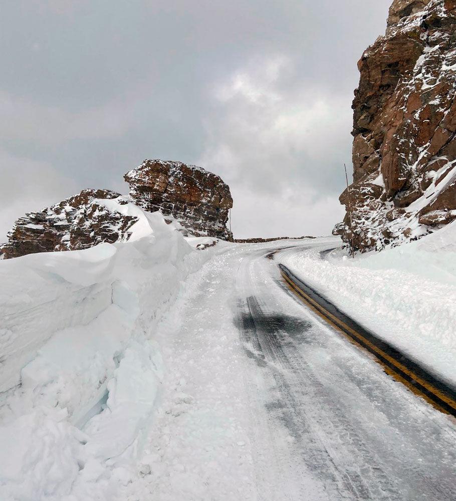 Rock Cut on Trail Ridge Road