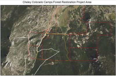 Cheley Colorado Camps Forest Restoration Project