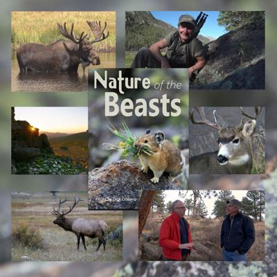 """Nick Mollé Releases  """"Nature of the Beasts"""""""