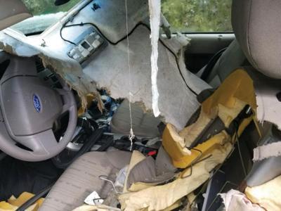 Be Bear Aware - Car Break-in