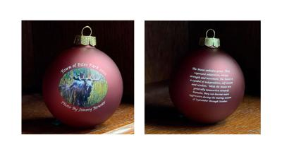 2021 Collector Holiday Ornament