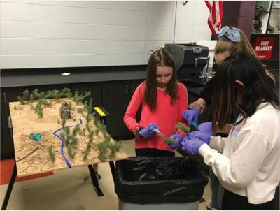 Estes Park Middle School Students Learn About Being Firewise