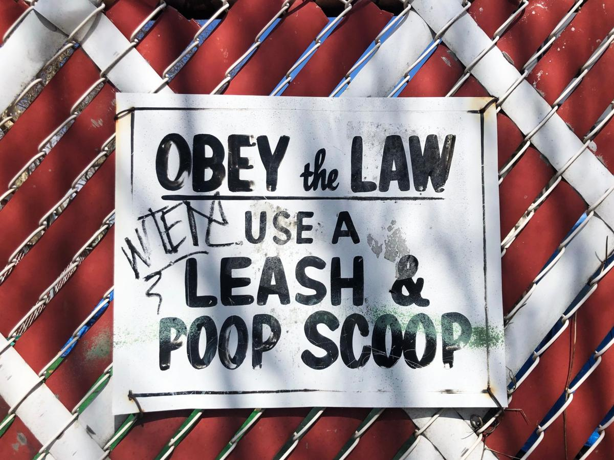 Main PHOTO--Lance Grandahl - Unsplash - Obey The Law.jpg