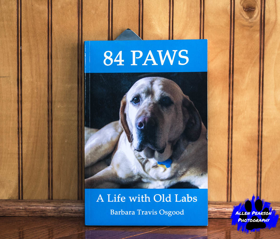 Allen Pearson Photography - 84 Labs - A Life with Old Labs.jpg