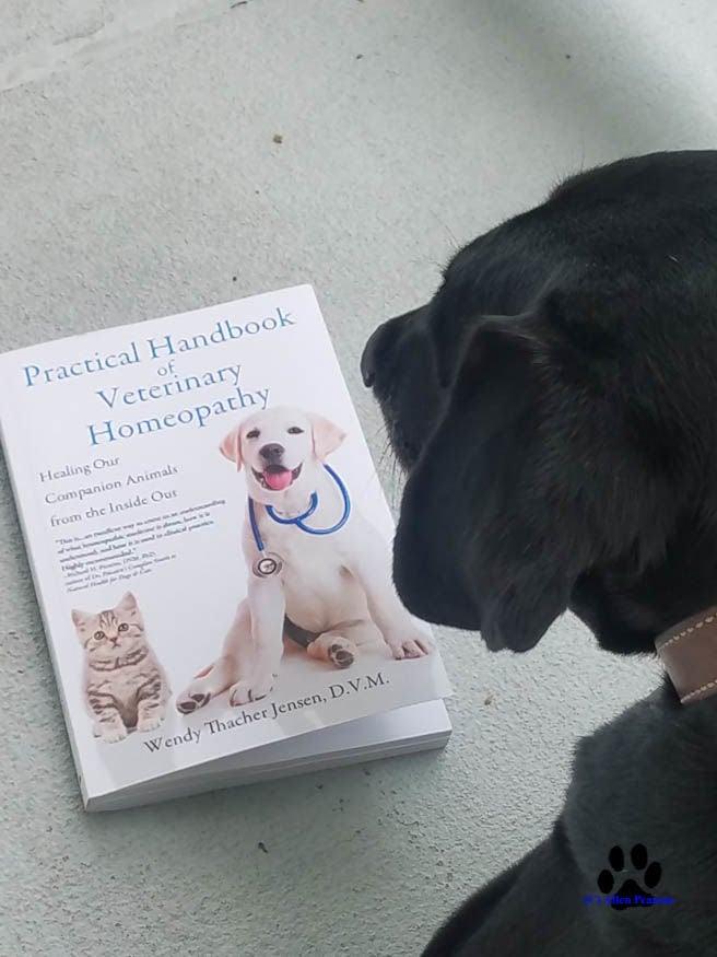 Allen Pearson Photography Noah and Practical Handbook of Veterinary Homeopathy1.jpg