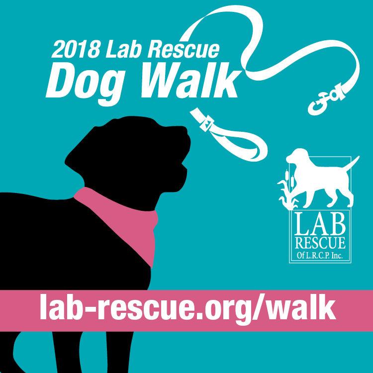 Lab Rescue - 2018 Walk.jpg.jpg