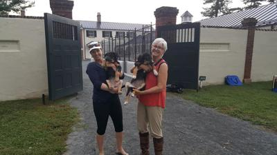 PetConnect Rescue - Hurricane Florence Rescue1.jpg