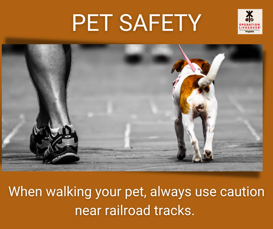 When walking your pet, always use caution near railroad tracks.