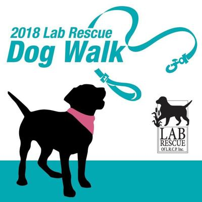 Lab Rescue - Lab Walk 2018-2.JPG