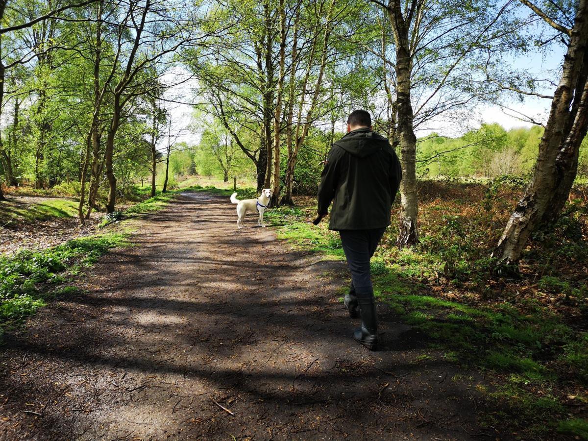 Unsplash - Beth Thompson-Guy Walking Dog.jpg