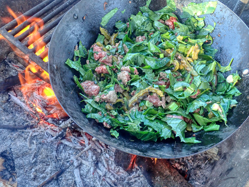 """Cooking hamburger, orache, and prickly pear """"nogales"""" in the wok. Elpel"""