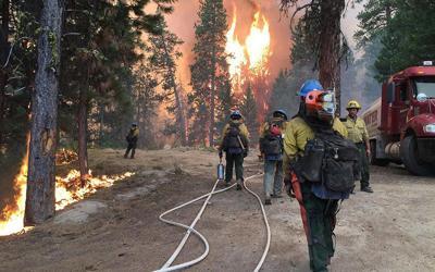 firefighters-800..jpg