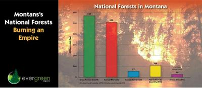 Musings on the escalating wildfire crisis: NATURE DOESN'T GIVE A HOOT WHAT YOU WANT