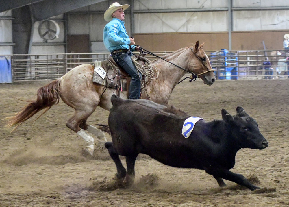 1000-2132019-08-25-4H-Ranch-Horse-Competition-Kings-Arena-_D507146.jpg