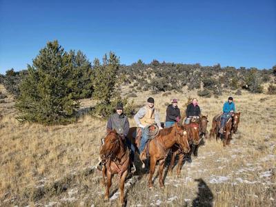 Montana Western Announces 2019 Colt Challenge and Sale