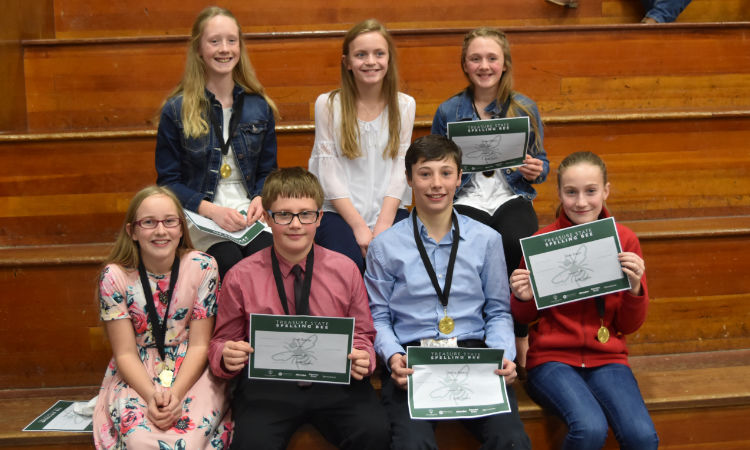 Greenfield School spellers