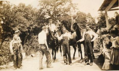 Grandpa and his mules