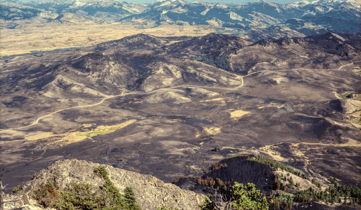 View from Haystack Butte of 1988 Fire Damage