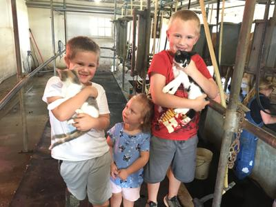 Tazewell County dairy's leap of faith proves pandemic no barrier