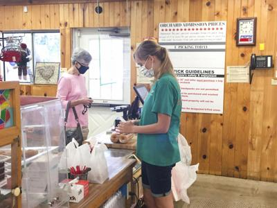 Apple orchards, pumpkin patches welcome fall customers