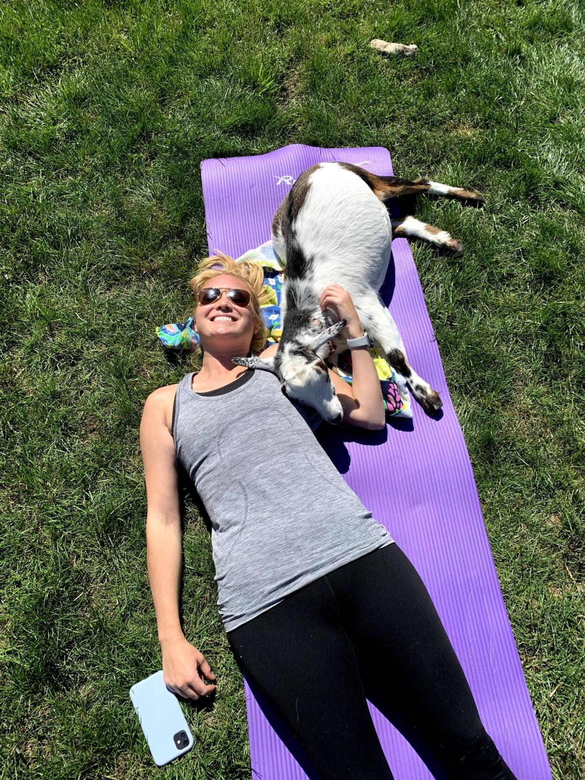 Kane County farm connects people, goats and yoga