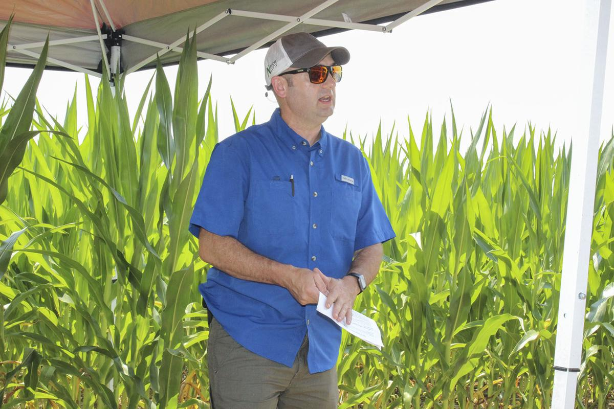 Researchers testing 'next generation of cover crops'