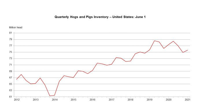 Hog prices forecast at seven-year high; herd growth minimal