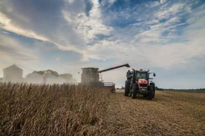 5 tips for 2020 soybean harvest