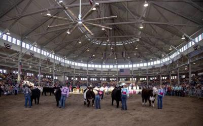 IDOA announces dates for junior livestock, horse shows
