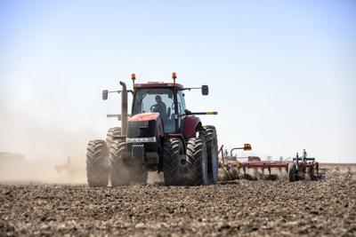 USDA forecasts record corn production, jump in exports