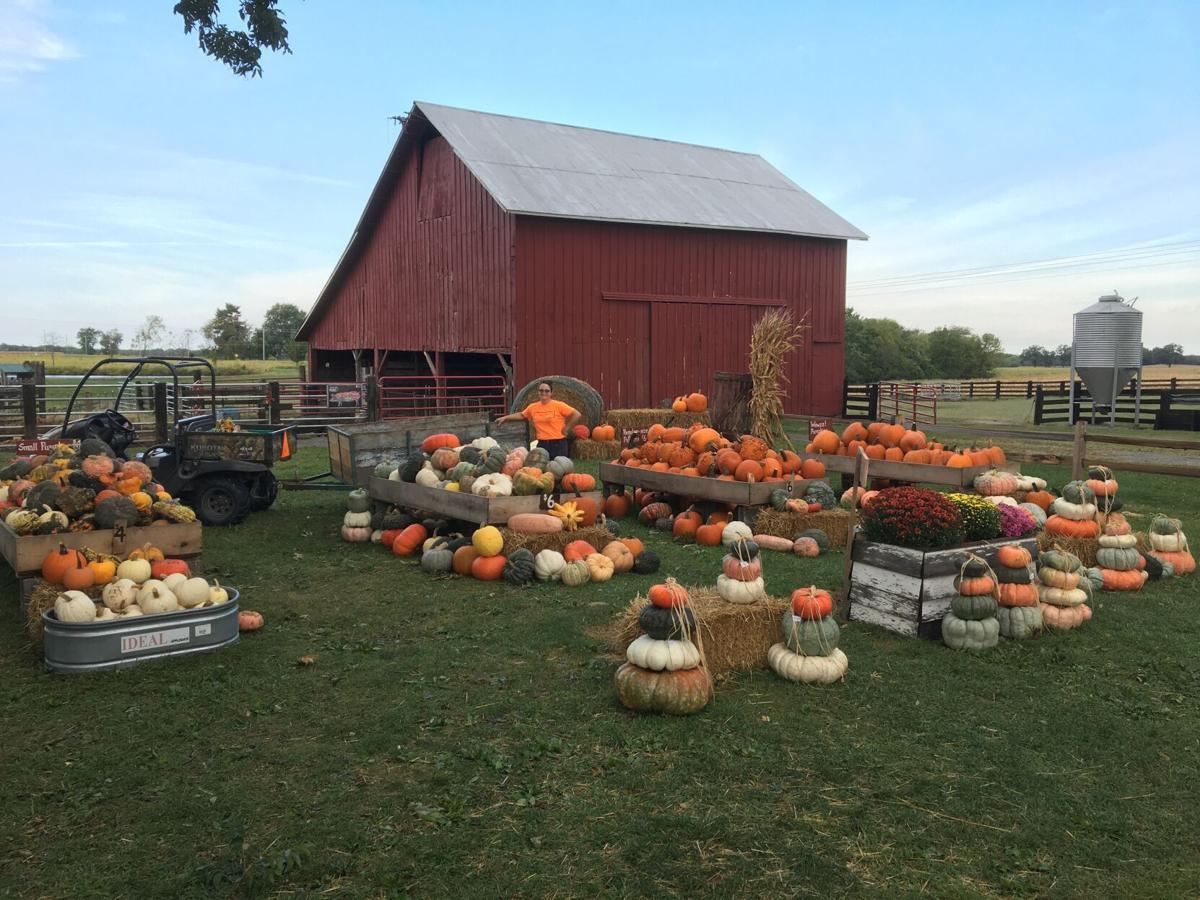 Family, farm focus the foundation of Greene Fields Farm