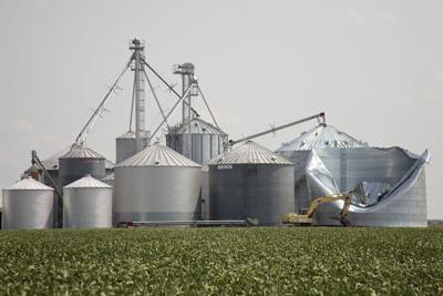 COVID-19 adds to harvest risks