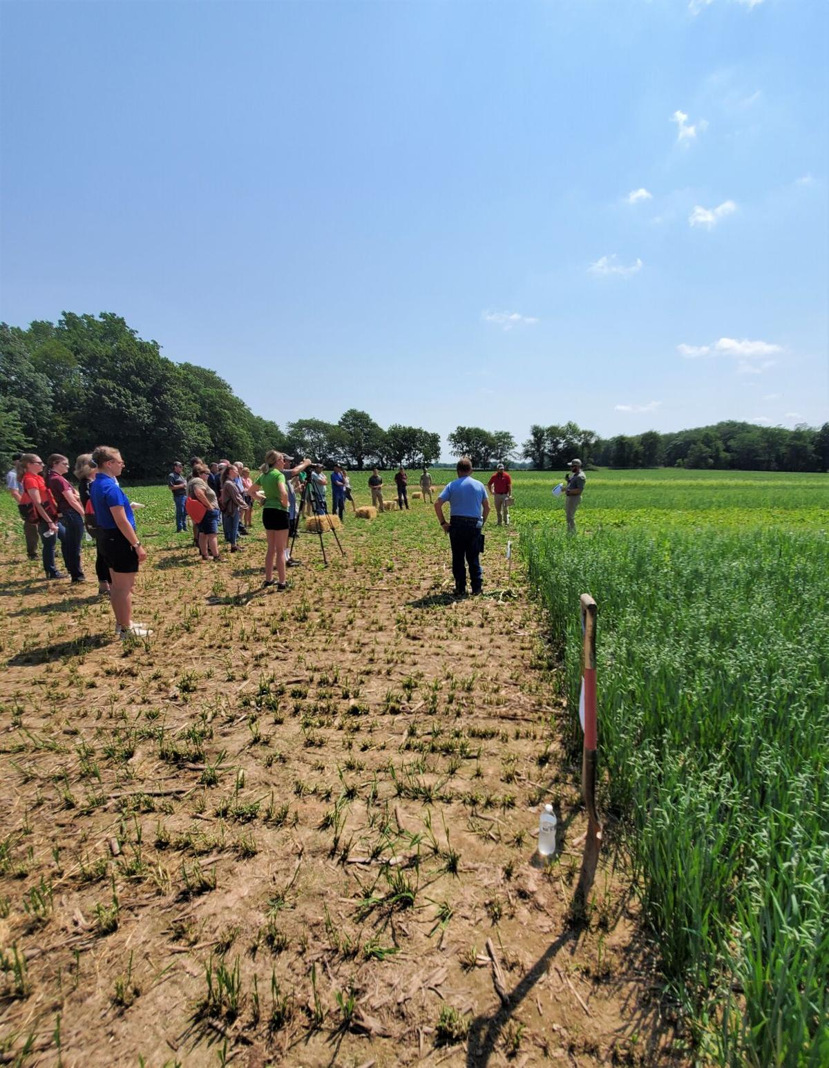 Field day touts starting simple with cover crops to yield multiple benefits