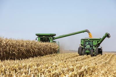 Harvest progress minimizes impact of latest windstorm on farms