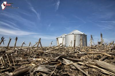 Tips for tackling damaged corn