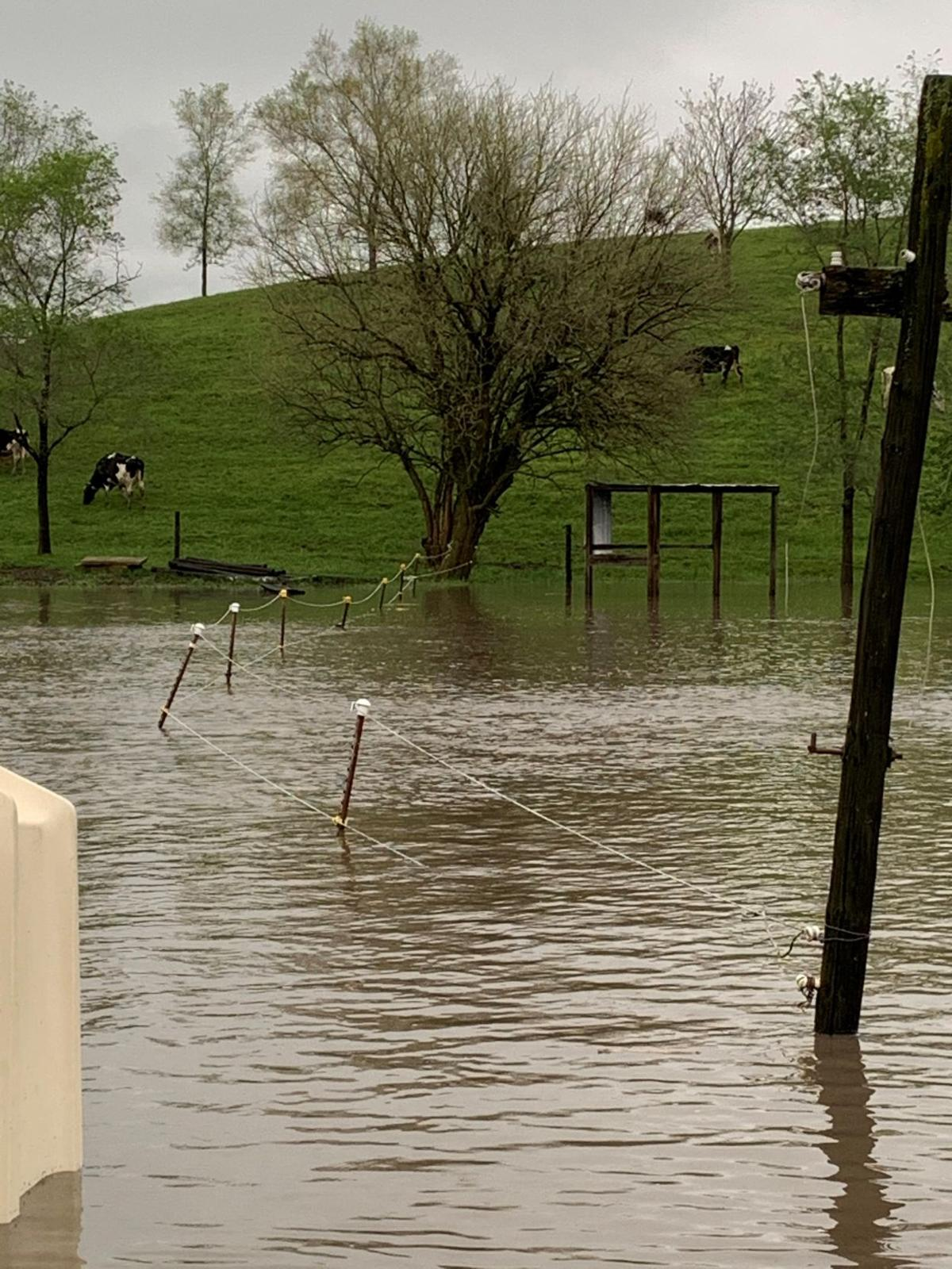 Flooding adds to recent frustrations for farmers