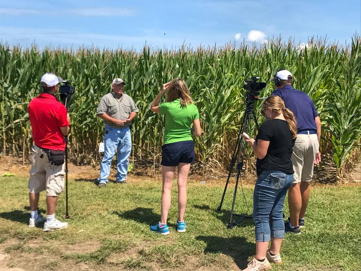 Nutrient management critical in prevent plant situations
