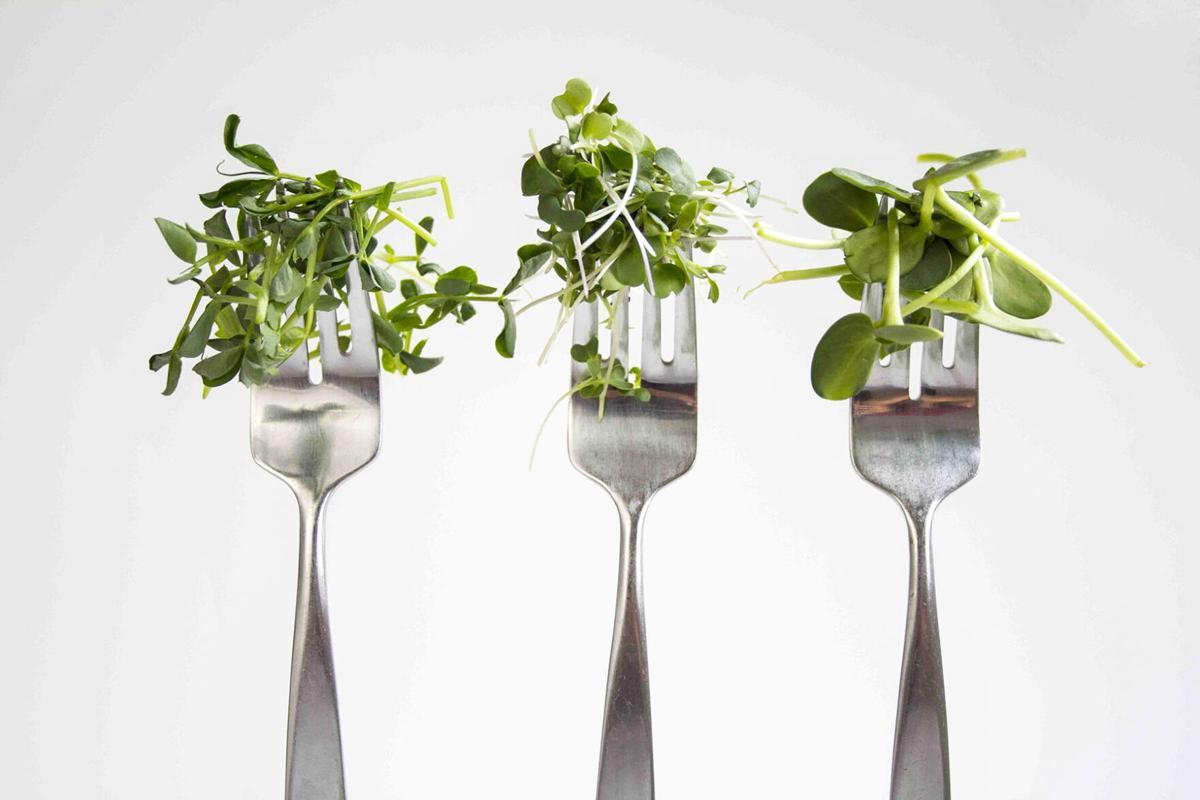McLean County specialty growers help customers find beauty, taste