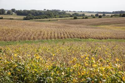Prairie Research Institute boosting farmers' productivity