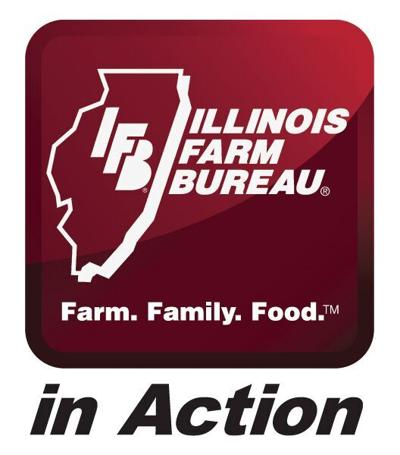 IFB in action logo