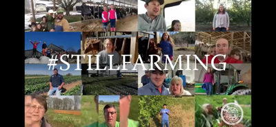 AFBF ramps up #StillFarming campaign to aid food banks