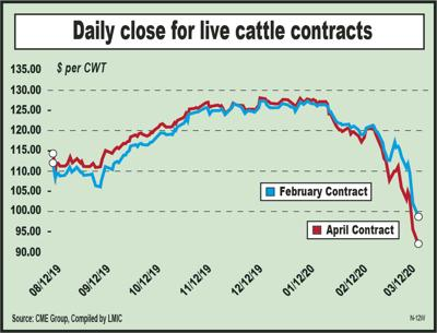 Market confusion overshadows cattle report