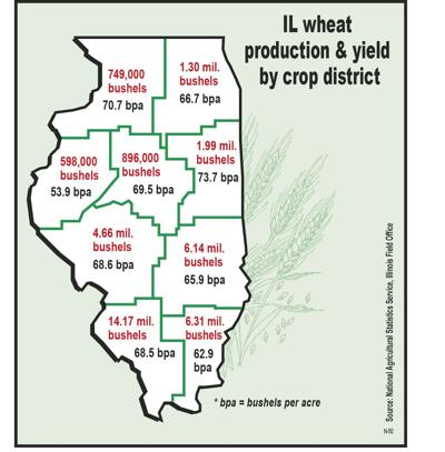 2019 a 'decent' year for wheat; Nine counties top 1 million bushels